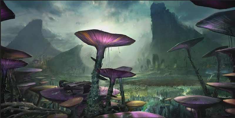 vastes étendues de champignons géants recouvrent une bonne partie de Felucia