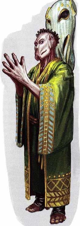 Un Vagaari vêtu d'une longue robe traditionnelle